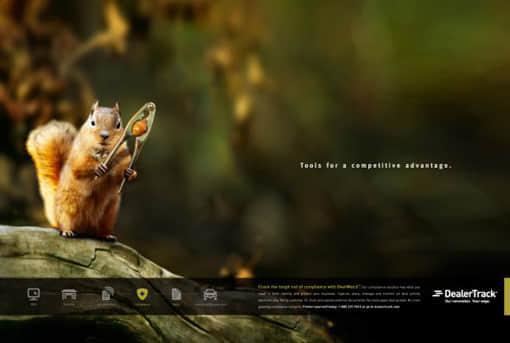DealerTrack-Holdings-Squirrel