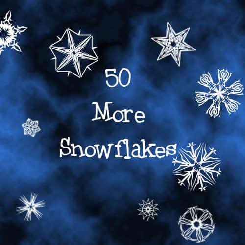 50种花型雪花笔刷