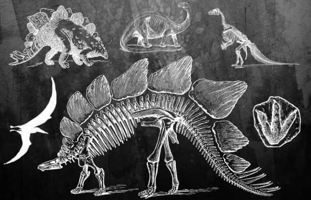 线条式恐龙骨架笔刷