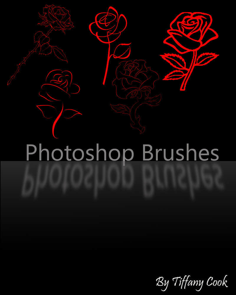 5组线条型玫瑰花笔刷套装