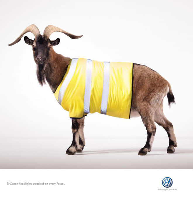 1-volkswagen-deer-hare-mountain-goat-animal-ad