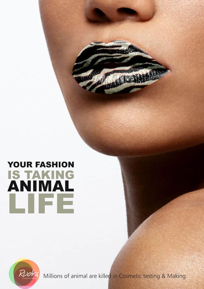 12-animal-animal-ad