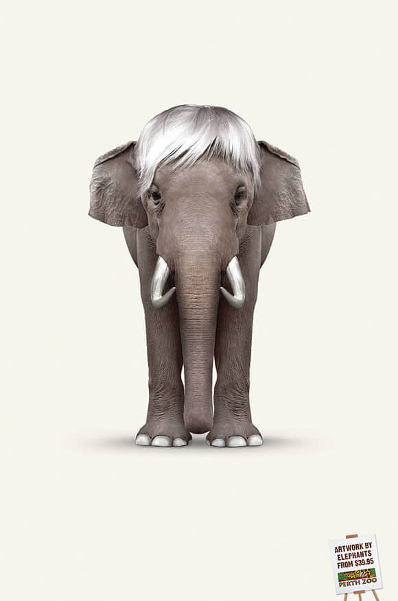 13-artworks-by-elephants-ad
