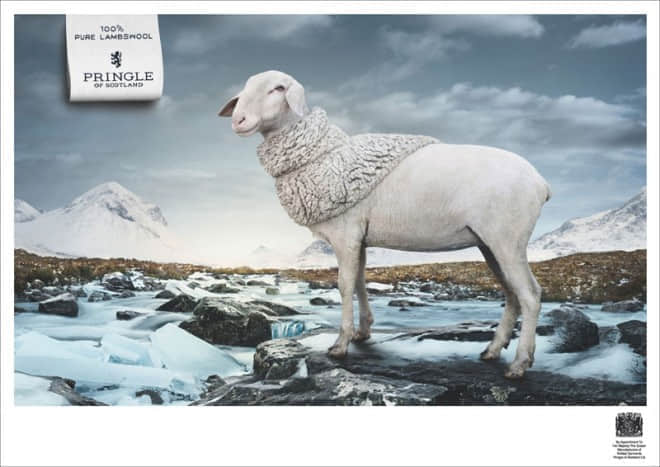 3-pure-lambswool-animal-ad.preview