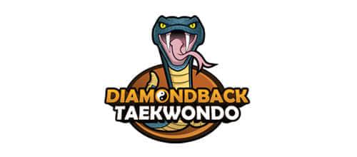 7-seven-Diamondback-Taekwondo