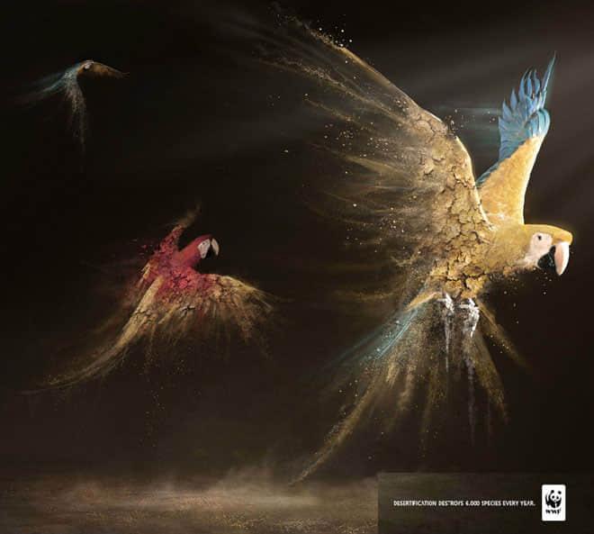 7-wwf-parrots-animal-ad