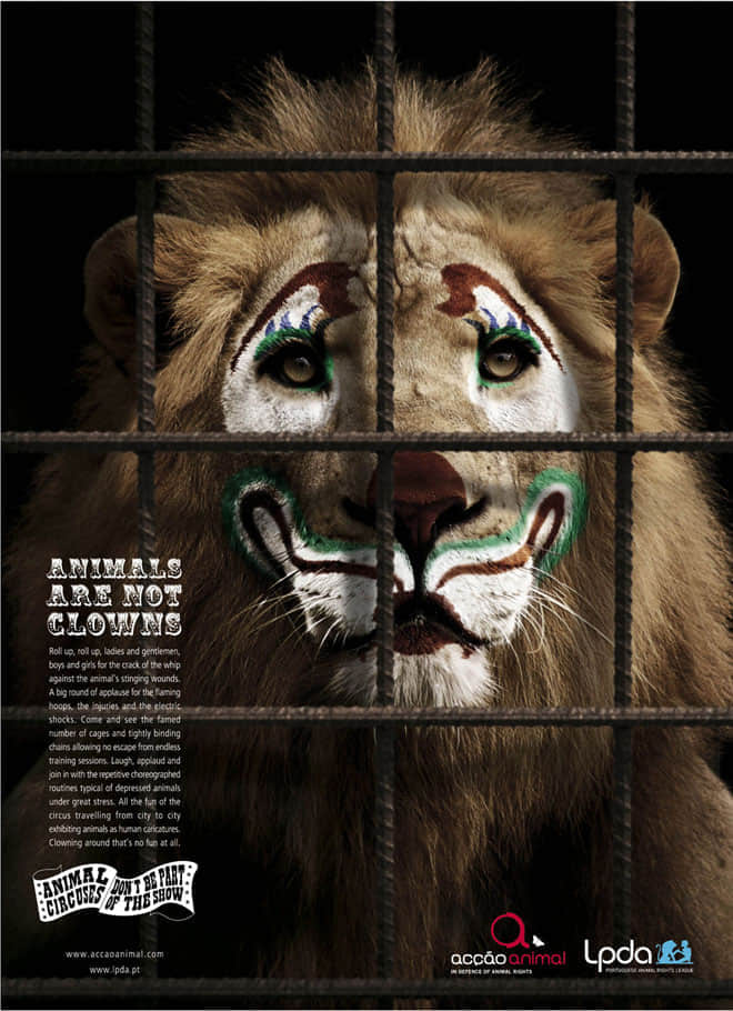 8-save-animals-zoo-animal-ad