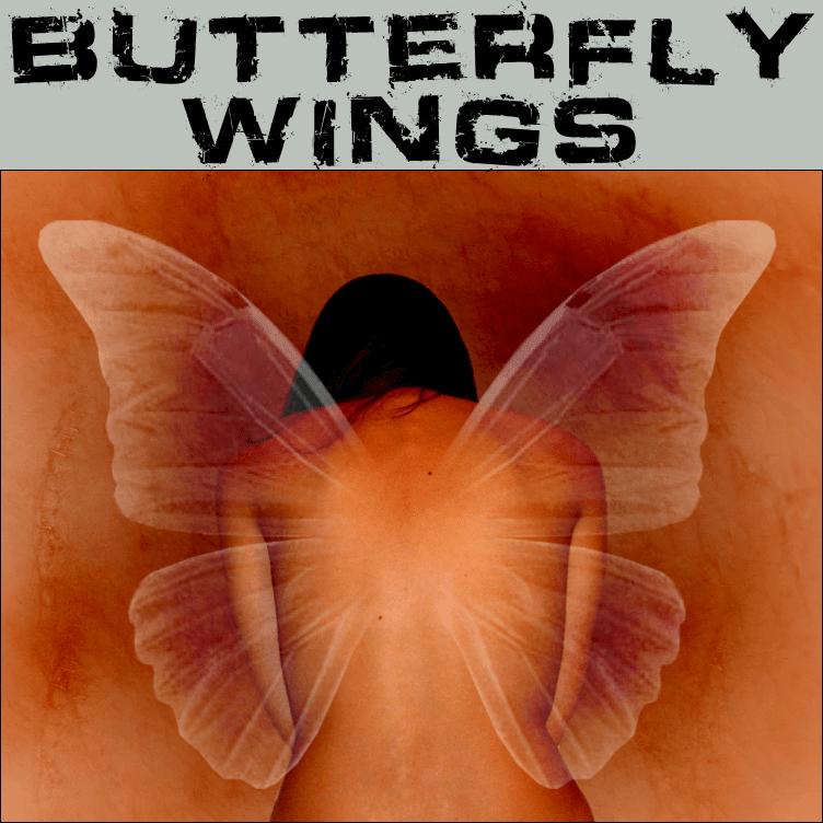 半透明蝴蝶翅膀笔刷