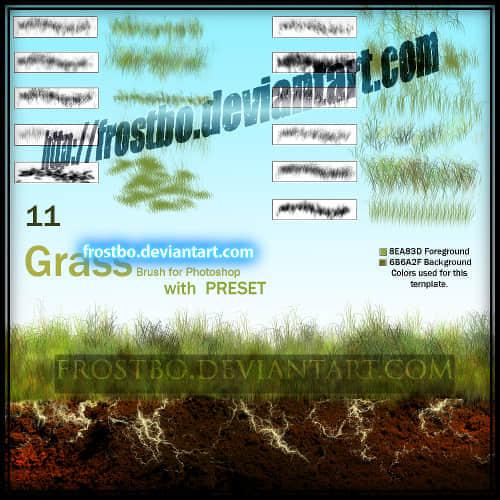 独特的Photoshop插画式草坪笔刷 青草笔刷 草坪笔刷  plants brushes