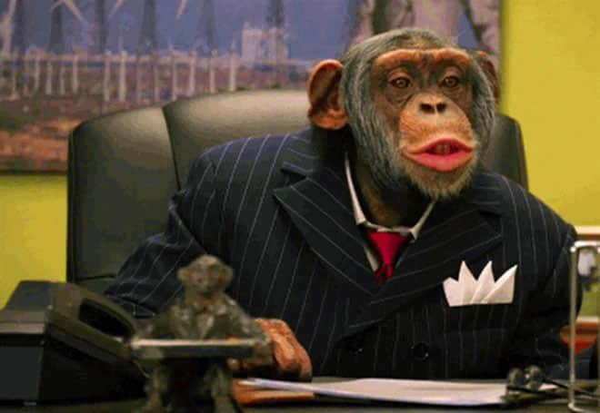 chimpanzees-in-super-bowl-ads