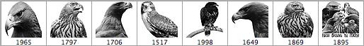 高品质猎鹰笔刷