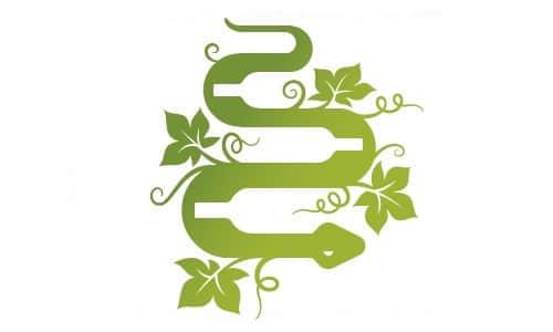 15-30-serpentine-year-of-snake-logos