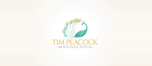 5-five-TimPeacock
