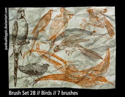 手绘漂亮的小鸟笔刷