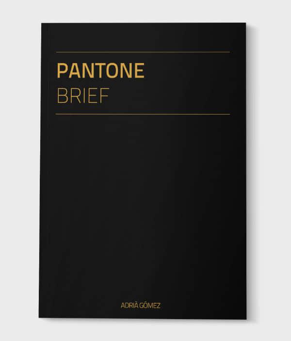 brochure-designs-31