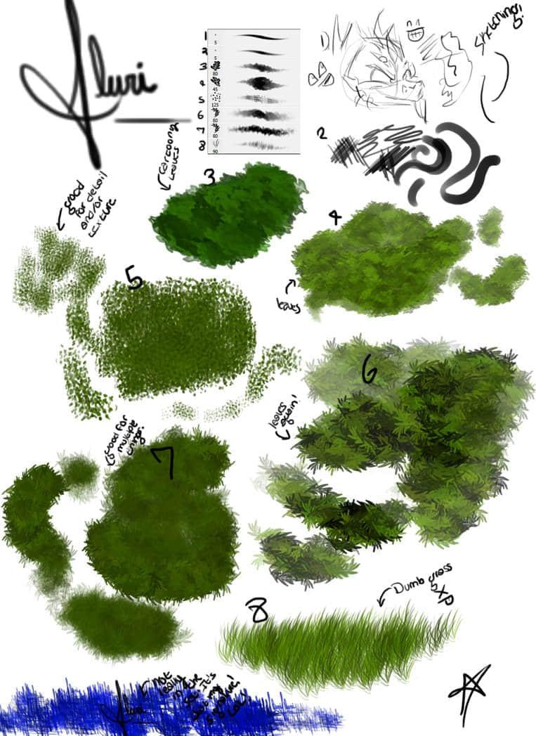 插画与绘画式植物笔触笔刷