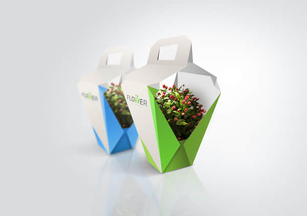 packaging-design-2-1