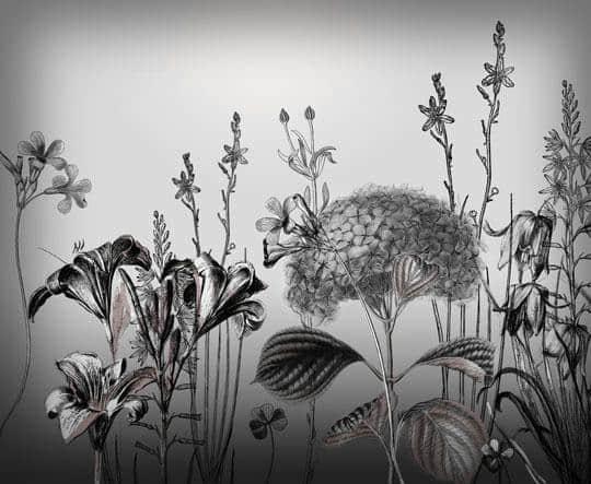 高清手绘式鲜花花朵笔刷