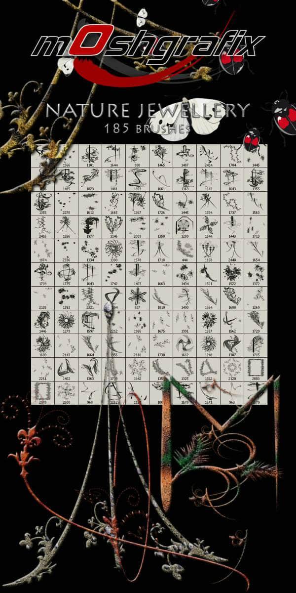 185个枝条、昆虫、花边、花纹等生物自然元素PS笔刷 植物枝条笔刷 昆虫笔刷  plants brushes