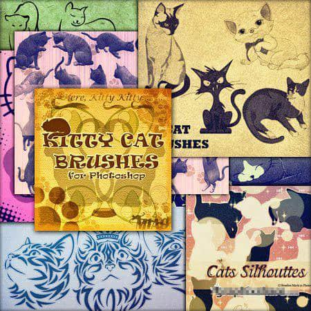 16个真实的猫和动画卡通猫合集PS笔刷下载