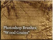 木材树木纹理效果PS笔刷
