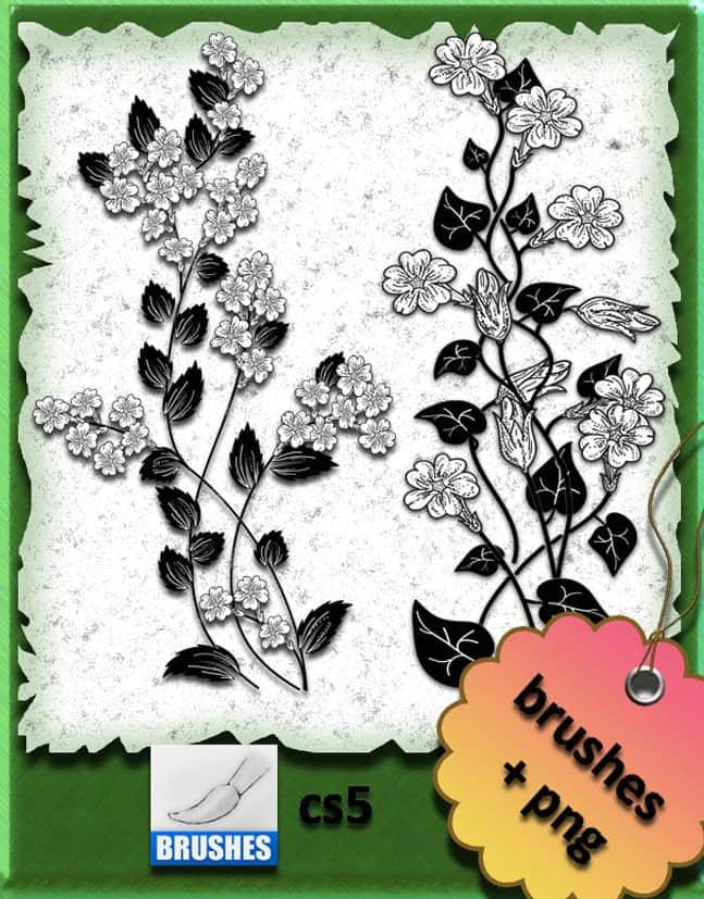 超美的手工描花朵装饰PS笔刷