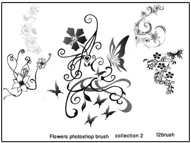 矢量花朵花边花纹PS装饰笔刷下载#.2