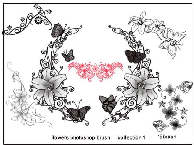 矢量花朵花边花纹PS装饰笔刷下载#.1