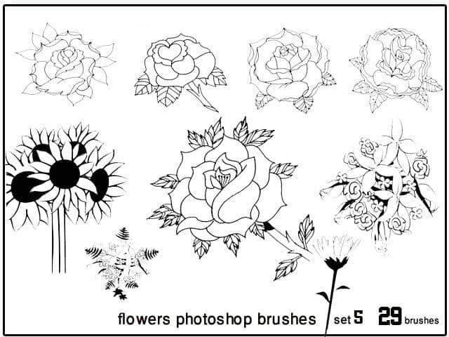 矢量花朵花边花纹PS装饰笔刷下载#.5