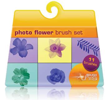 11种真实的鲜花花朵笔刷