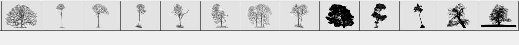 真实的热带树木、树林PS笔刷下载