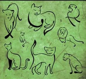 经典的手绘线条猫咪PS笔刷