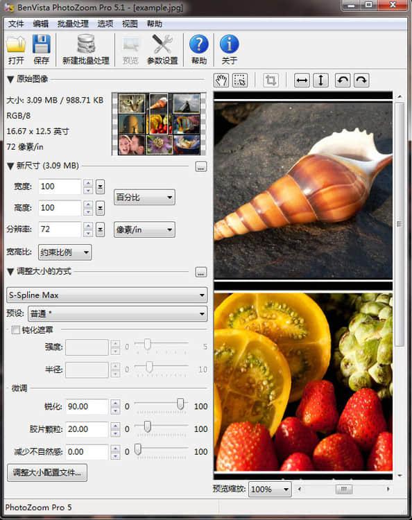 图片无损放大神奇 PhotoZoom Pro 5 中文注册版下载 售价高达169欧元!