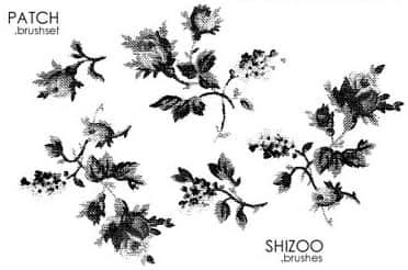 水墨水彩式花朵花纹PS笔刷