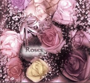 爱情玫瑰花束PS笔刷素材