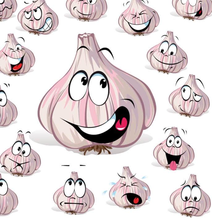 可爱搞怪大蒜头表情图片素材 【美图秀秀素材】 美图秀秀素材 卡通大蒜头表情图片  hanxi brushes