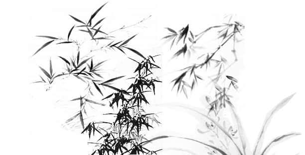 中国传统水墨竹子、竹林PS笔刷素材