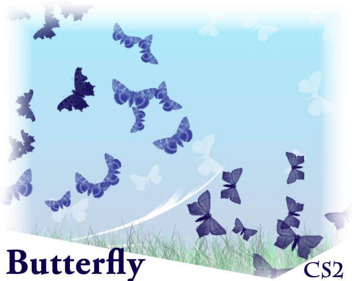 蝴蝶与飞蛾Photoshop笔刷素材