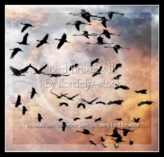 天空中飞行的候鸟群photoshop笔刷素材