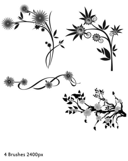 漂亮矢量植物鲜花、花纹图案photoshop笔刷素材