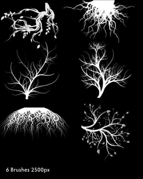 树木、树根艺术花纹效果photoshop笔刷下载
