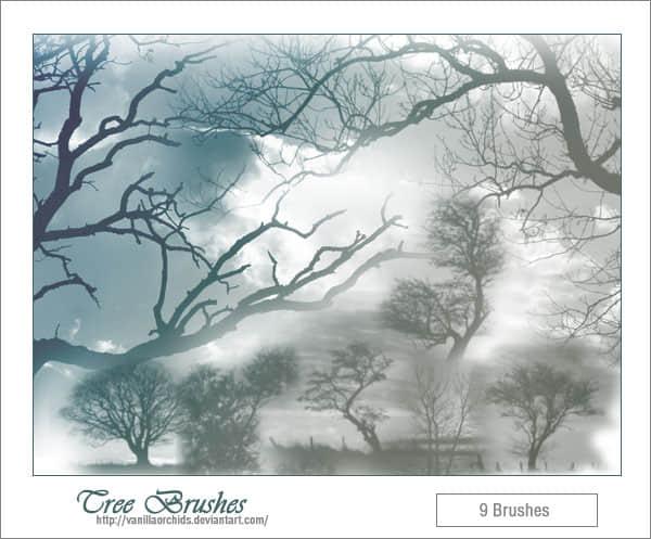 真实的树木剪影photoshop笔刷素材