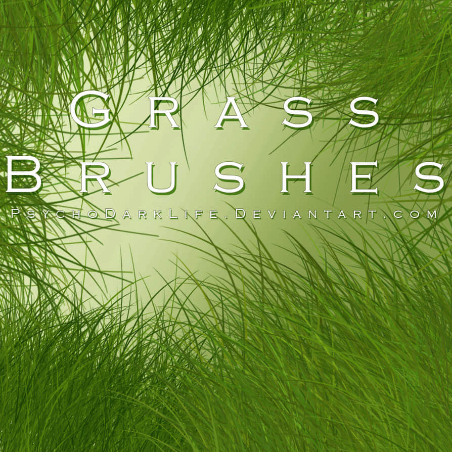 CG仿真青草、草丛photoshop画笔素材下载 青草笔刷 草丛笔刷 CG画笔  plants brushes