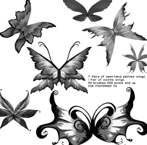 美丽的艺术蝴蝶photoshop笔刷素材 蝴蝶笔刷 梦幻翅膀笔刷  wings brushes