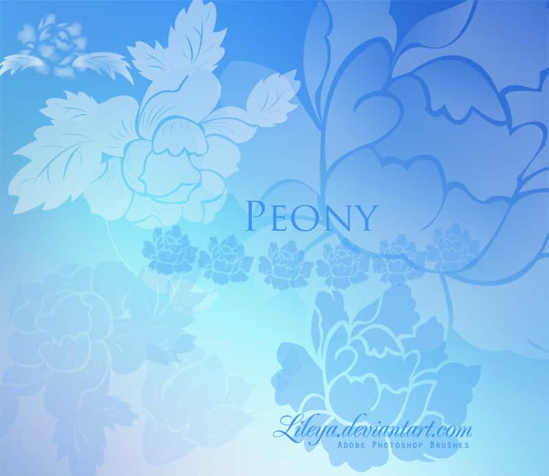 美丽灿烂的印花花朵图案photoshop笔刷素材