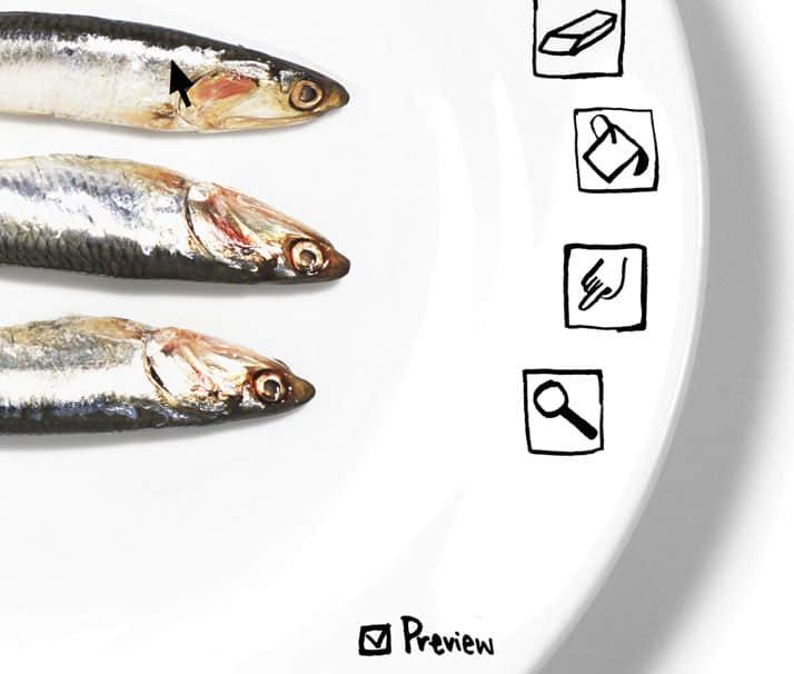 fishcan_1111140207
