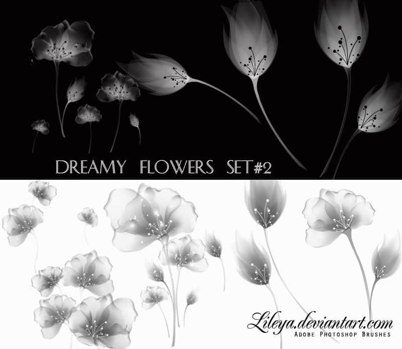 梦幻花朵集photoshop笔刷素材 #.4 花朵笔刷 梦幻花朵笔刷  adornment brushes flowers brushes