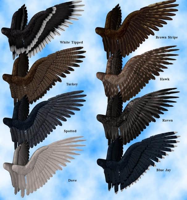 8对雄鹰羽翼翅膀美图秀秀png素材下载 #.2