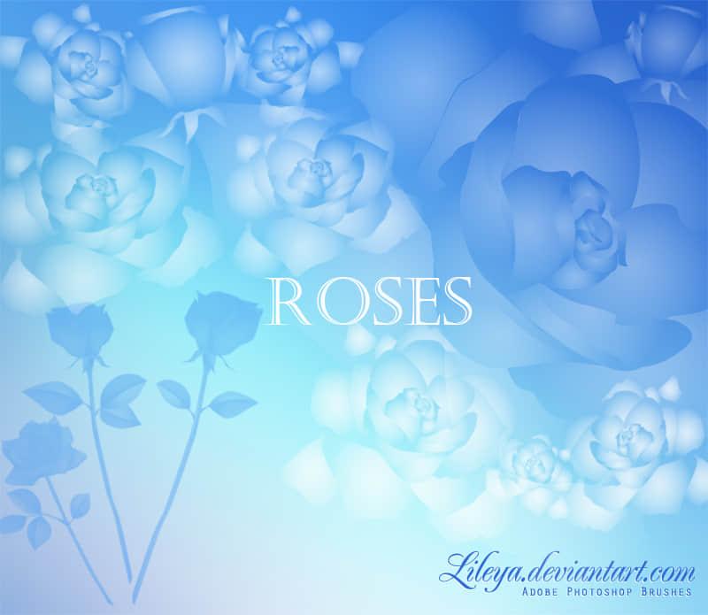 玫瑰花花纹图案效果photoshop笔刷素材