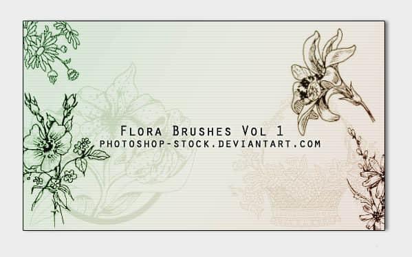漂亮手绘鲜花花朵图案花纹photoshop笔刷素材